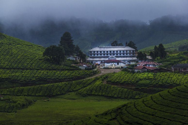 IF YOU ARE A Landscape Professional photographer Then Here's Why The Serene Town Of Munnar OUGHT TO BE THE NEXT Muse